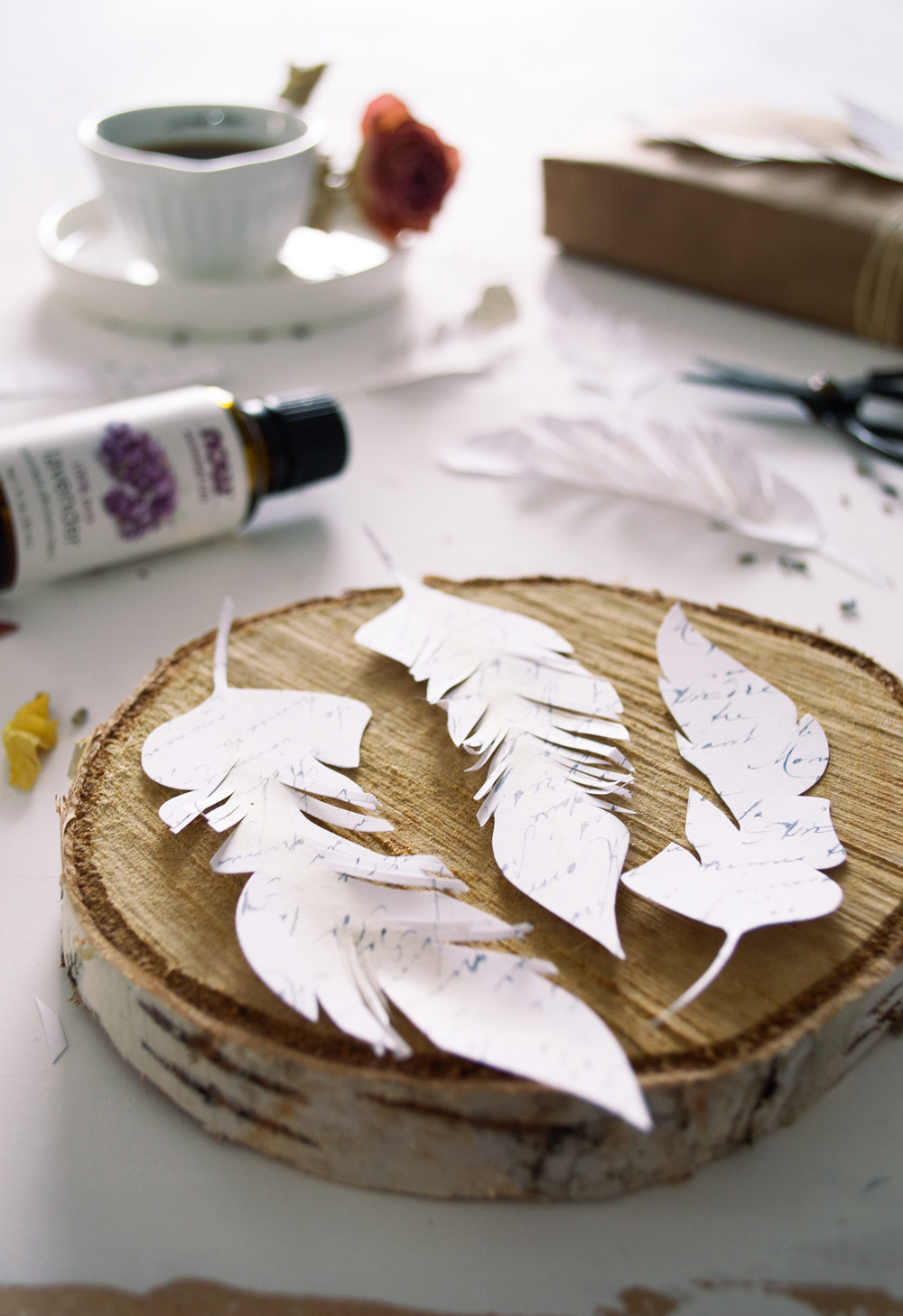 Diy French Script Paper Feathers Free Printable